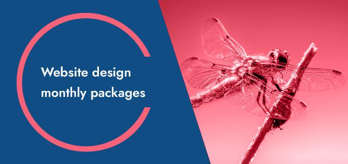 Website Design Monthly Packages